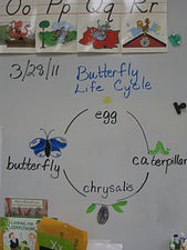 April with Eric Carle - A Thematic Unit