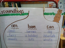February Fun - Learning About Groundhogs