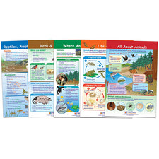 All About Animals Bulletin Board Chart Set