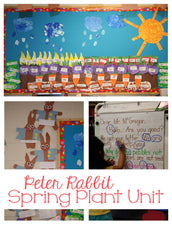 Cute Peter Rabbit Themed Plant Unit!