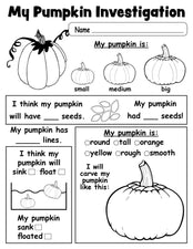 Pumpkin Investigation Worksheet - FREE Printable!