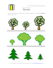 Learning About Sizes: Height Worksheets