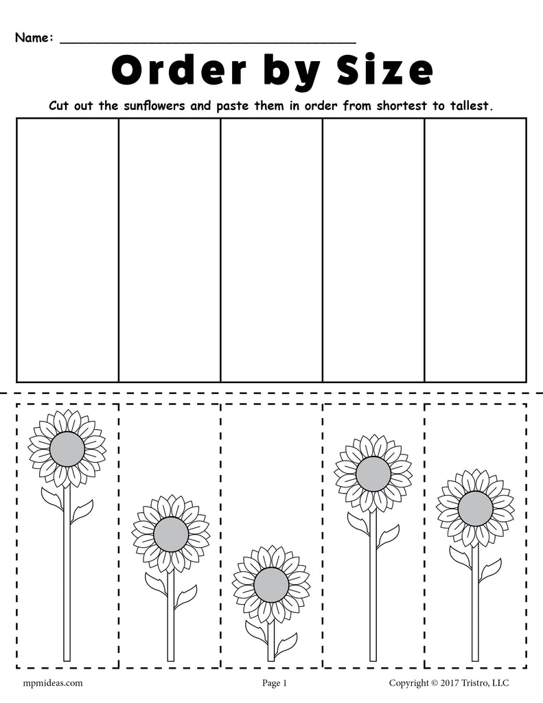 free printable sunflower ordering worksheets shortest to tallest ta supplyme. Black Bedroom Furniture Sets. Home Design Ideas