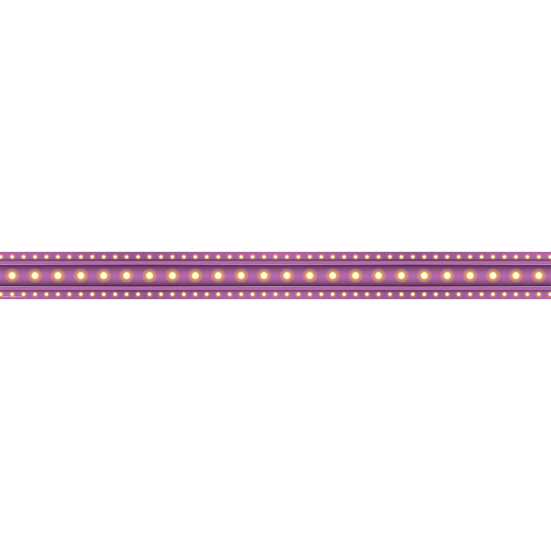 Purple Marquee Straight Bulletin Board Border Trim