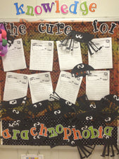 The Cure For Arachnophobia! - Halloween Bulletin Board