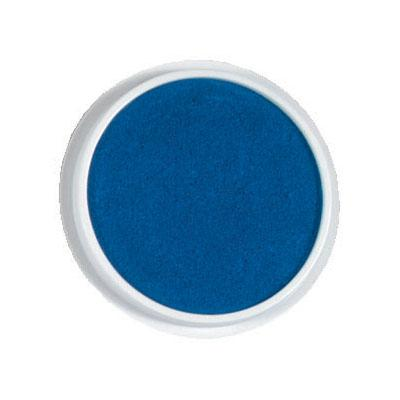Jumbo Washable Paint/Ink Stamp Pad-Blue