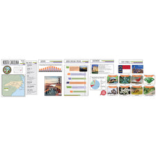 Capstone State Bulletin Board Set - North Carolina