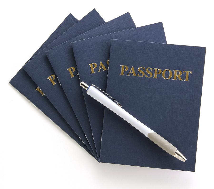 Passport Books (Blank Pages) - 24 Books