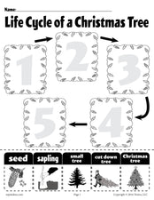 """Life Cycle of a Christmas Tree"" Printable Worksheet"