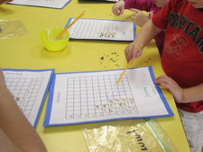 Graphing Seeds & Analyzing the Data
