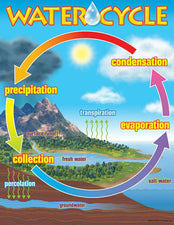 The Water Cycle Learning Chart