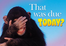 That was due today? ARGUS® Poster