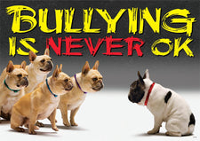 Bullying is never OK ARGUS® Poster