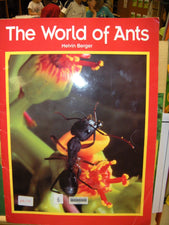 Bugs, Bugs, Bugs - All About Ants!