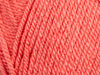 Stylecraft  Special Aran Yarn yarn Watermelon