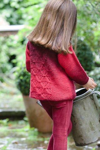 Sweater and Jacket in Stylecraft Ombre (9253)