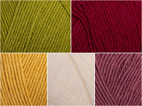Stylecraft Bellissima DK Autumn Leaves Blog Tour Colour Pack