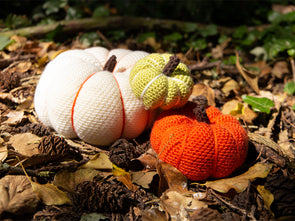 Pumpkin Trio Crochet Kit and Pattern in Deramores Yarn
