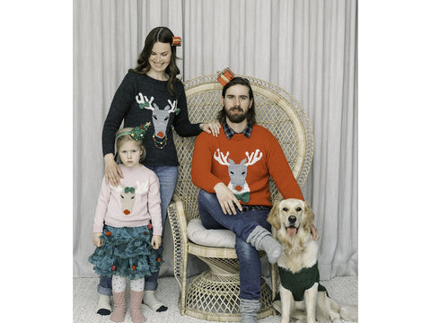 Men's Reindeer Sweater in Novita Nalle