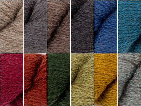 Naturals & Brights Colour Pack in Rowan Moordale