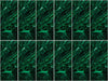 King Cole Tinsel Chunky Value Pack Emerald