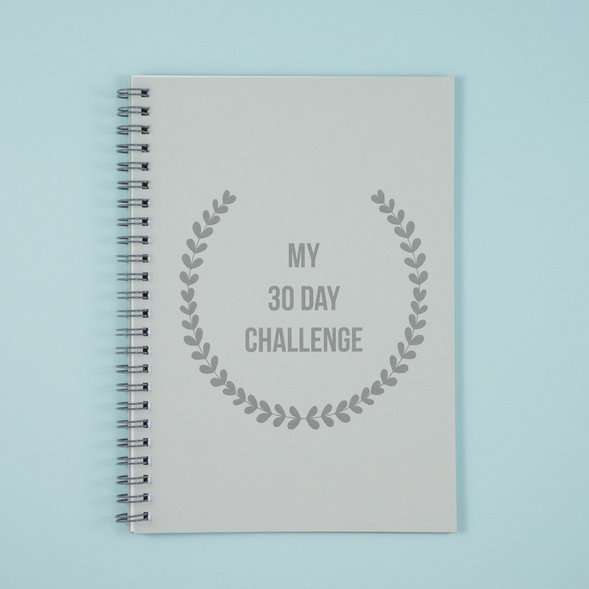 30 day challenge notebook