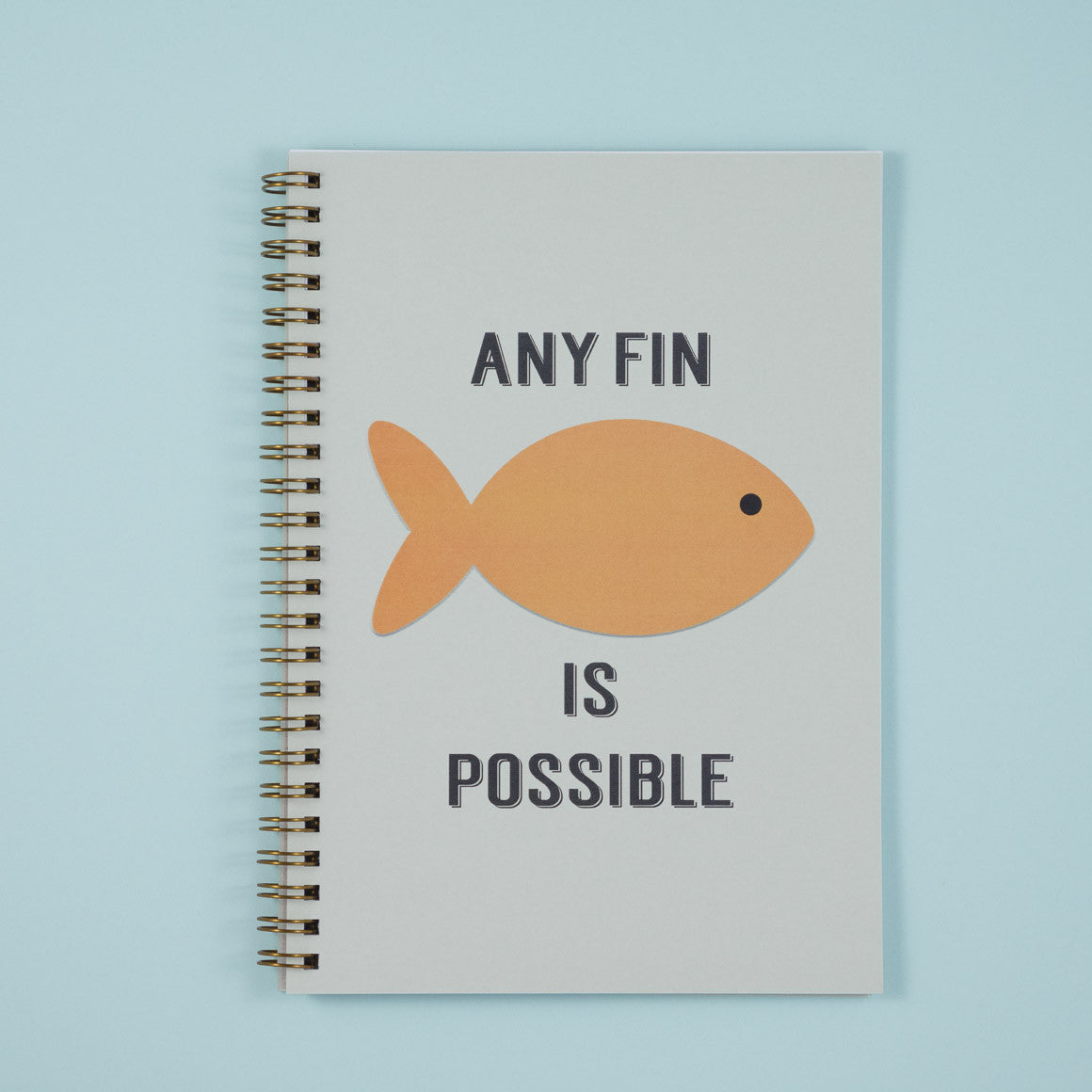 Any Fin is Possible Notebook