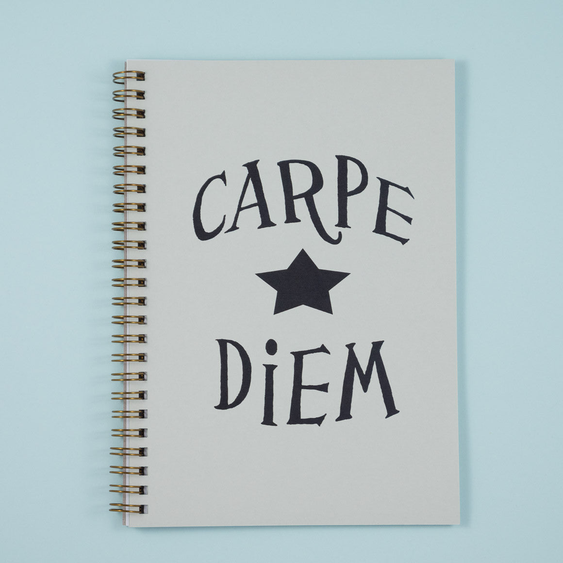 carpe diem seize the day A5 notebook