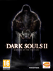 Dark Souls 2: Scholar of the First Sin, STEAM
