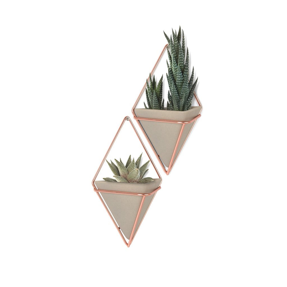 Trigg Small Wall Vessel, Copper/Concrete - Set of 2