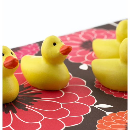 Polyresin Duck Magnets, 6pk