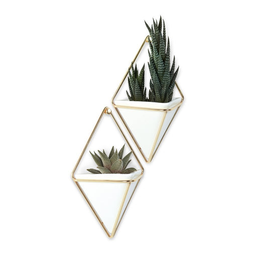 Trigg Small Wall Vessel, White/Brass - Set of 2
