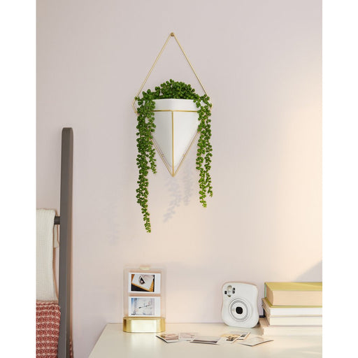 Trigg Large Wall Vessel, Brass/White