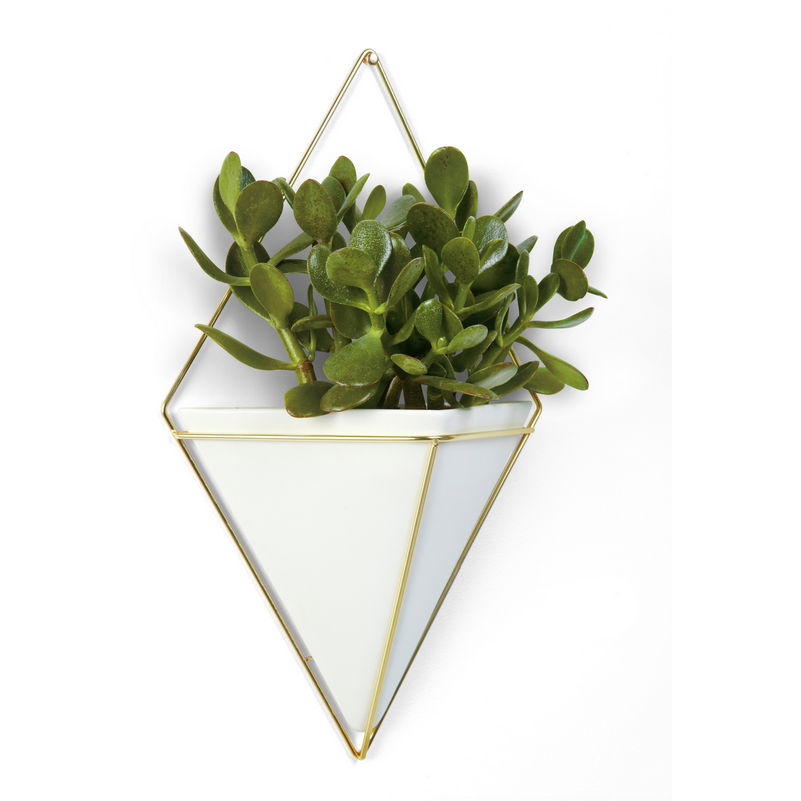 Trigg Wall Vessel Brass White, Large - Neat Space