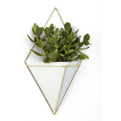 Trigg Wall Vessel Brass White, Large