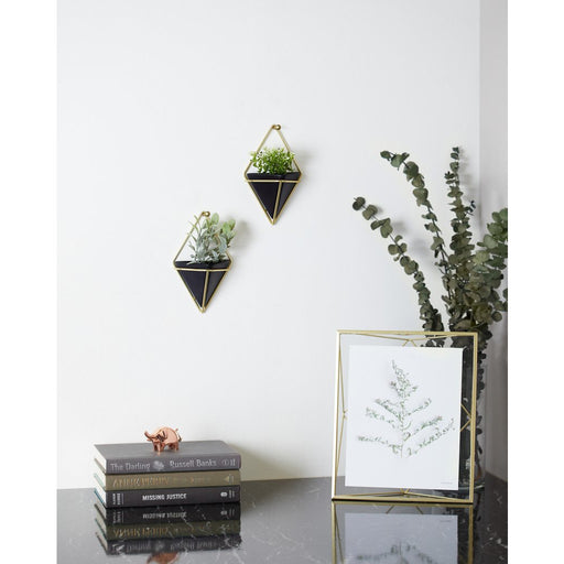 Trigg Small Wall Vessel, Black/Brass - Set of 2