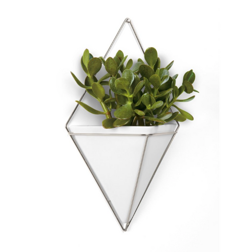 Trigg Large Wall Vessel, White/Nickel
