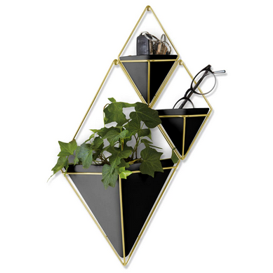 Trigg Large Wall Vessel, Black/Brass - Neat Space