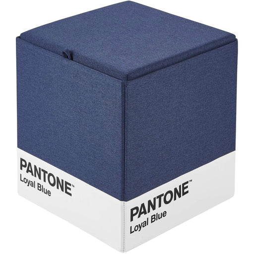 Pantone Storage Ottoman, Loyal Blue
