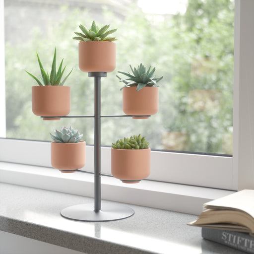 Terrapotta Tabletop Planter