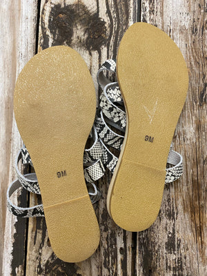 Coconuts by Matisse Snakeskin Print Leather Strappy Sandals ~ Size 9/Fits 8.5 /Queen Bee's Closet