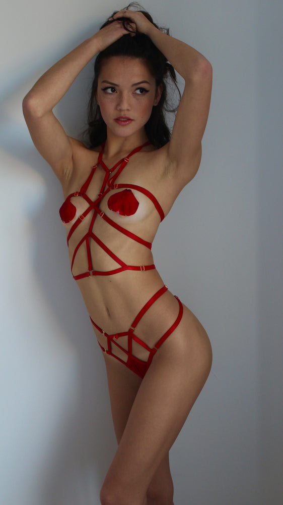 Load image into Gallery viewer, Red Bella Harness