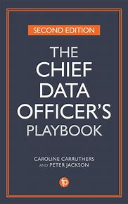 The Chief Data Officer's Playbook, Second Edition