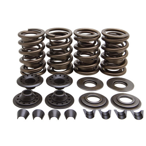 "Lightweight Racing Evolution™ 1984 to 1999 Valve Spring Kit, .655"" Lift"