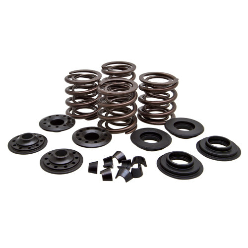 Lightweight Racing Shovelhead™ 74 1966 to 1977 Valve Spring Kits