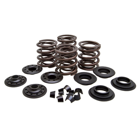 Panhead 1948 to 1965 Valve Spring Kit