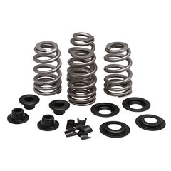 "Beehive Valve Spring Kit for 5/16"" Valves, .610"" Lift"