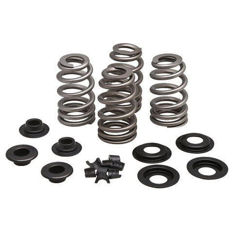"Beehive Valve Spring Kit for 5/16"" Valves, .660"" Lift"