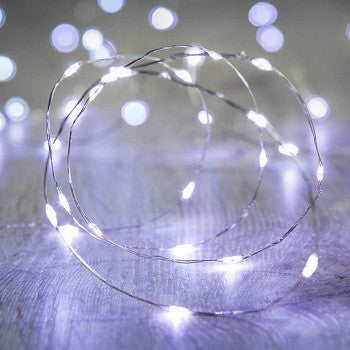30 LED Copper String Light-Cool White