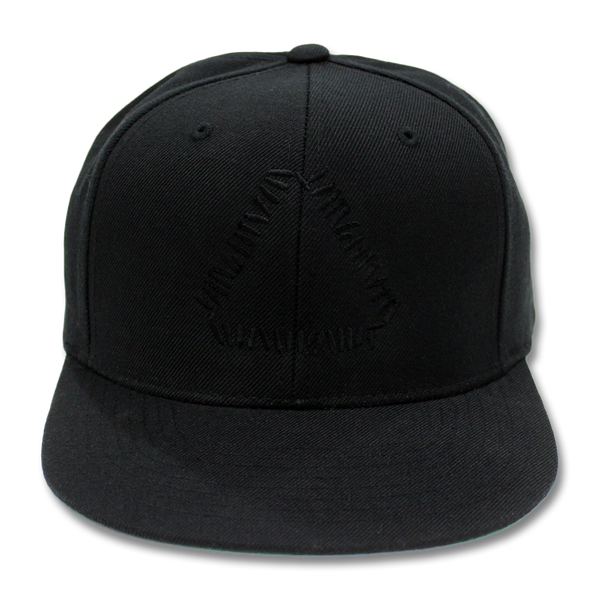 Official Warpaint Embroidered Triangle Logo Snapback (Black)